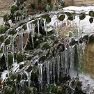 Ice Bridge by Marie Van Schie