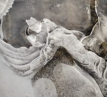 Nature's Abstract Ice Art by Deb Fedeler