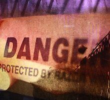 Danger II by Kim Evangelista