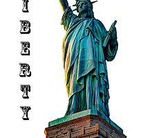 Liberty Light by Steve Purnell