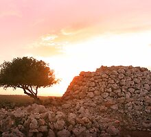 Sunset on Paleolithic remains   by miradorpictures