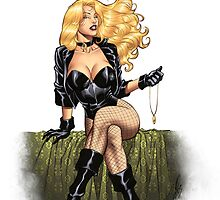 Black Canary Elegant Comic Art Pinup by alrioart