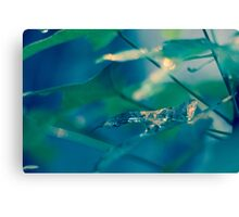 Green Elegance Canvas Print