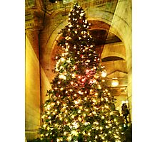 New York Public Library Holiday Tree Photographic Print