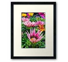 Stolen beauty Framed Print