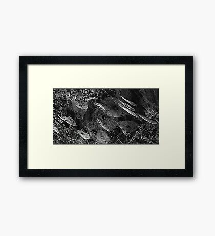 Web Art !! Framed Print