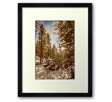 Beautiful Rocky Mountain Winter Day Framed Print