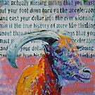 'live the fast life at half pace' by Cat Leonard