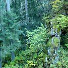 The Mossman of Idaho by BrianAShaw