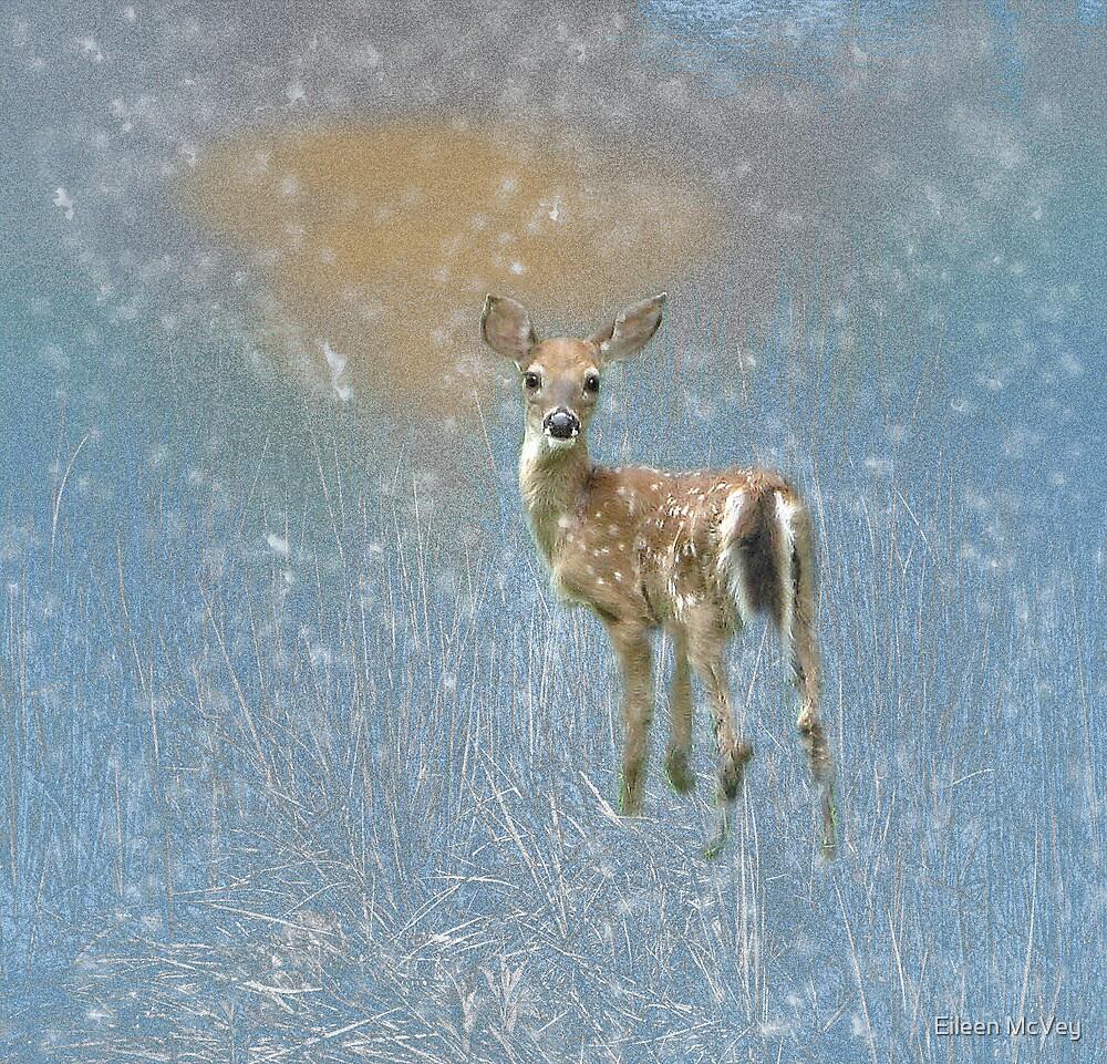 Winter Solstice by Eileen McVey