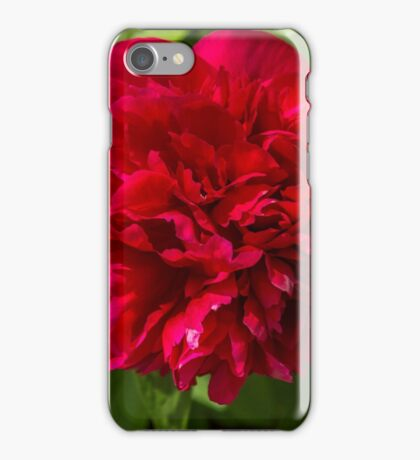 Peony Red iPhone Case/Skin