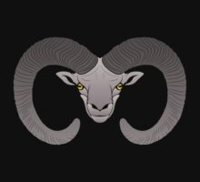 Ovis. Mouflon. Ram by green52