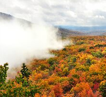 Autumn's Misty Veil by Karen Peron