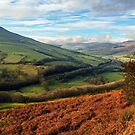 The Hope Valley by Stephen Liptrot