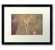 It is not alone Framed Print