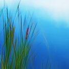 Artscape, Reeds by Imi Koetz