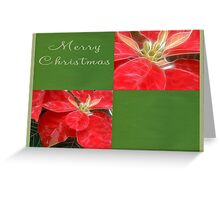 Mottled Red Poinsettia 1 Ephemeral Merry Christmas Q5F1 Greeting Card