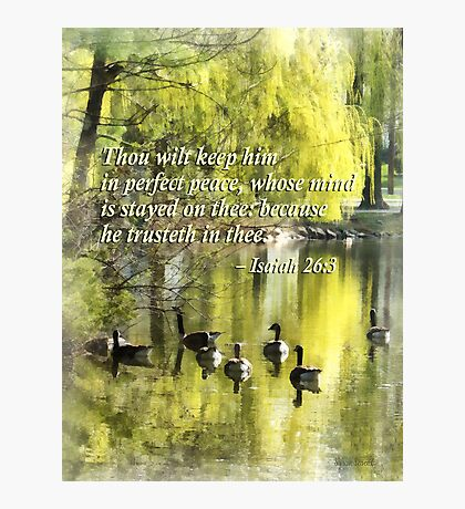 Isaiah 26 3 Thou Wilt Keep Him In Perfect Peace Photographic Print