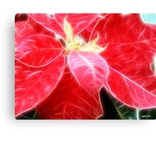 Mottled Red Poinsettia 2 Angelic Canvas Print
