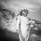 Angel Flowers by olga zamora