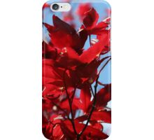 Autumn Leaves Phone Case iPhone Case/Skin