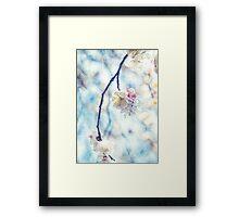 White Pink Plum Blossoms Vintage Concrete Texture Framed Print