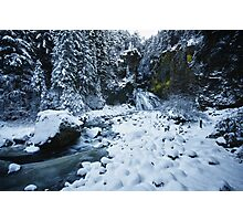 Winter scene snow in the forests and frozen creek of the Alps - color - Il Sangue dell'Inverno Photographic Print
