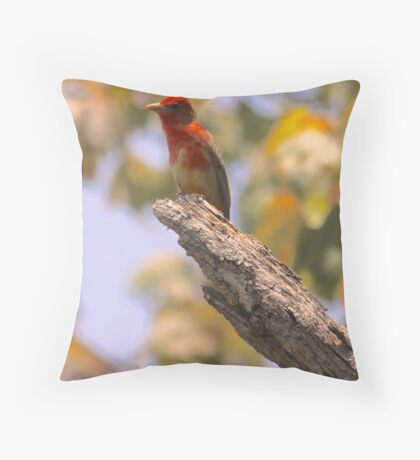 Adolescent Male Tananger Throw Pillow