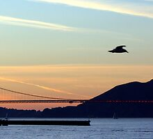 Golden Gate Bridge at Dusk by renlife