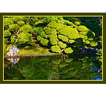 Japanese Garden Pond Photographic Print
