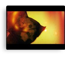The Great Post Fall  Canvas Print
