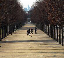 Winter in Paris by John Samson
