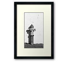 Fire Hydrant  Framed Print