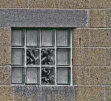 Block Window by Joy  Rector