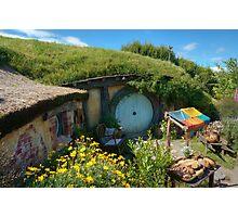 Hobbit Hole Photographic Print