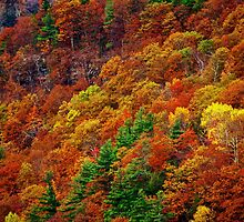 House on a Hill - Autumn Catskill Mountains by smoothstones