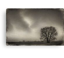 Wet Plate Series II Canvas Print