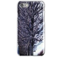 Kilmainham Forestry Phone Case iPhone Case/Skin