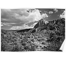 Sedona Desert Under Cloudy Skies in Black and White Poster