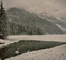 Frozen lake under the snow with swans artistic wall art color - Let it snow by visionitaliane