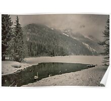 Frozen lake under the snow with swans artistic wall art color - Let it snow Poster