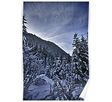Winter scene snow in the forests of the Alps - color photo - Foresta di Neve Poster