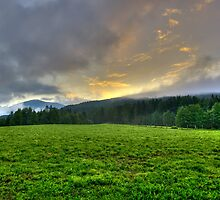 Dawn on a green pasture in the Alps landscape mountain photography color wall art - Sorge il Sole by visionitaliane