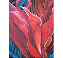 Flame Flower Photographic Print
