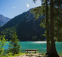 Bench in front of green alpine lake in the summer wall art decoration - Il mio piccolo paradiso by visionitaliane