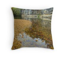 Buffalo National River,  Pruitt Arkansas, USA. Throw Pillow