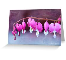 A Bevy of Bleeding Hearts  Greeting Card