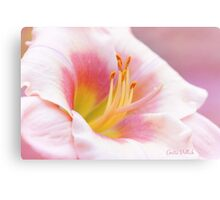 Summer's Gentle Beauty Canvas Print