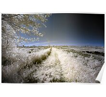 Rural landscape infrared photography wall art - Nei campi dall'altra parte Poster