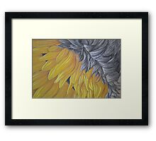 Upside down Sunflower Framed Print